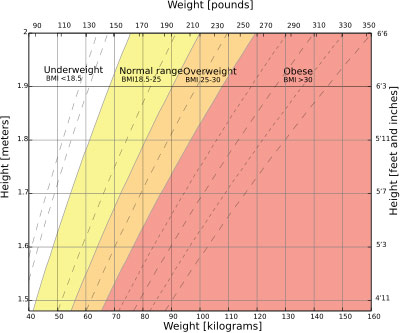 Bmi Chart Calculator Body Mass Index Weight Height Chart Converter