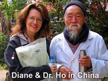 Diane McLaren TCM Dr. Ho In China
