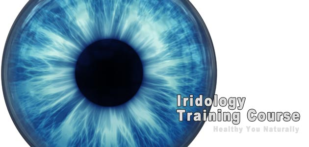 Iridologist Training Course Level II