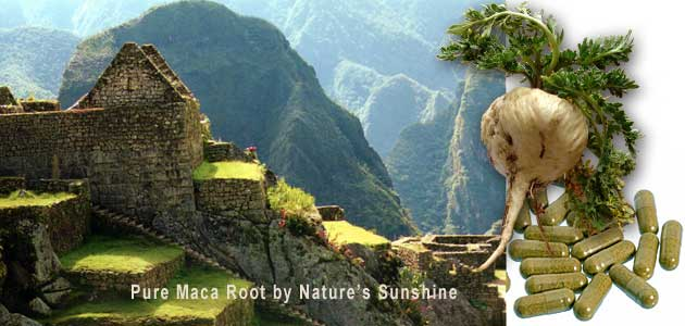 Maca Root Herbal Supplement