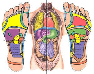 Introduction to Reflexology (2-Day) Workshop (Phase 1)
