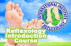 Reflexology Traning Course Level 1